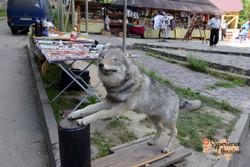 Badley stuffed wolf-imp