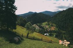Mountain curves of Dzembronya