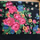 Thumbnail: Vintage black scarf with floral design from Ukraine