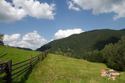 Views in Dzembronya