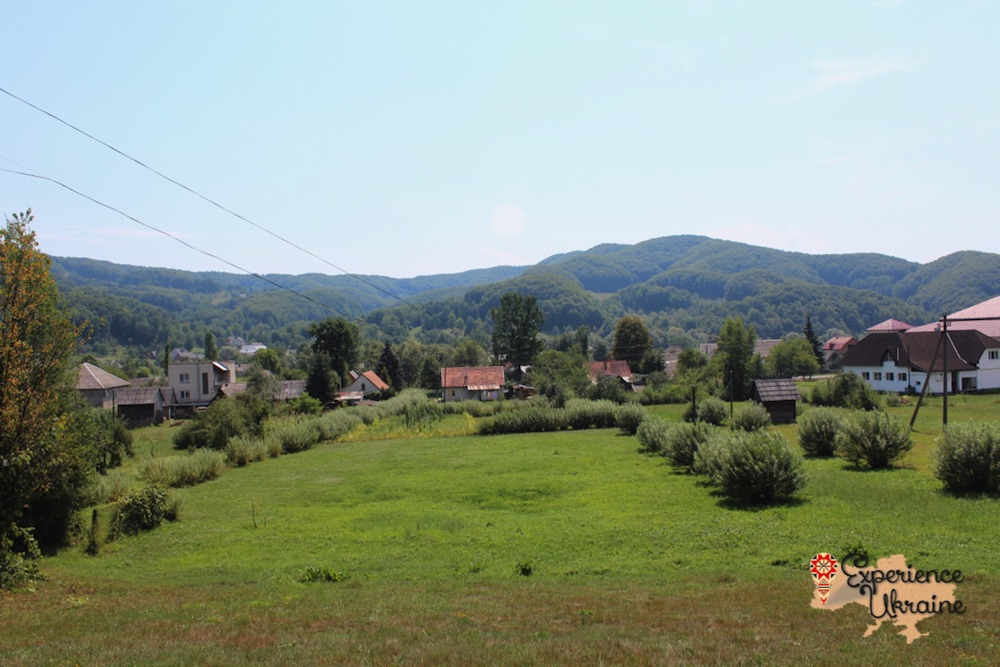 Panorama of Nyzhnie Selyshche