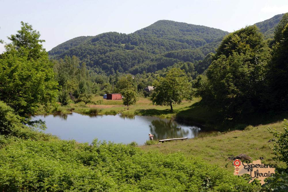 Ukrainian volcanic pond-imp