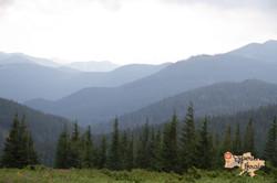 Beautiful Carpathians