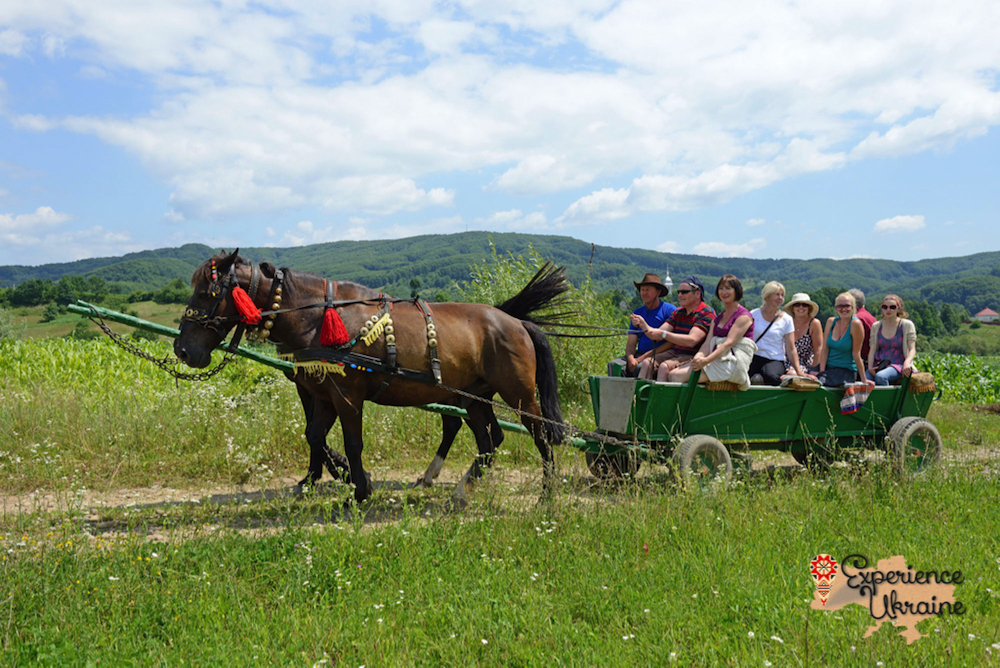 Horse ride in Transcarpathia-imp