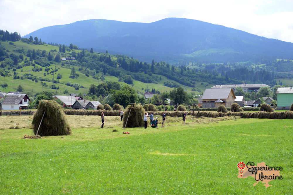 Family hay making in Carpathian Mountains LR-imp