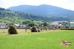 Family hay making in Carpathian Mountains LR-imp