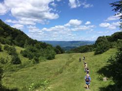 Walk through the rolling hills