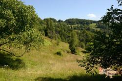Semi-natural grassland Lypovets-imp
