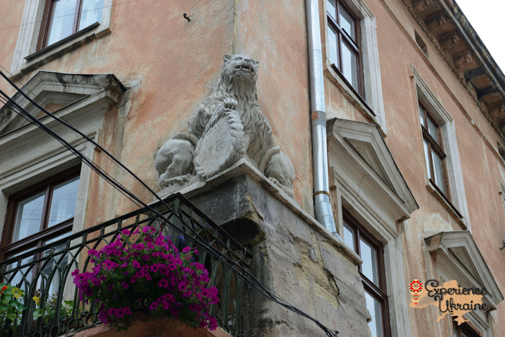 The twin lion at Lviv-imp
