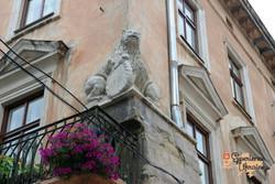 The twin lion at Lviv-imp