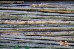 Wooden textures of Carpathians