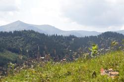 View from the tops around Dzembronya