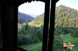 View from our window.