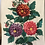 Thumbnail: Vintage  hand embroidered cotton runner from Ukraine