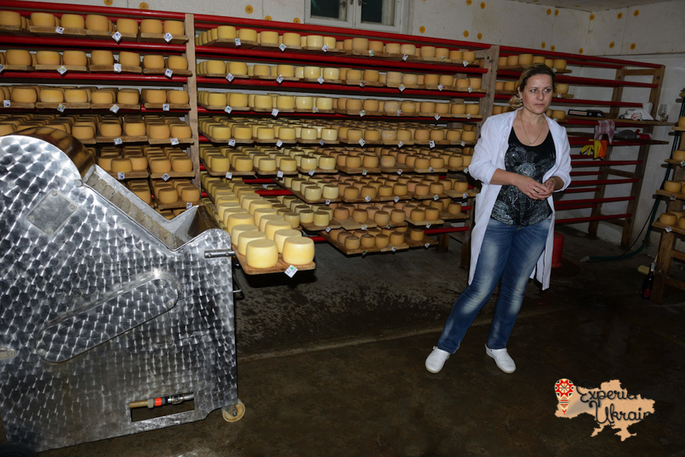 Cheese making factory in Nyzhnie Selyshe-imp