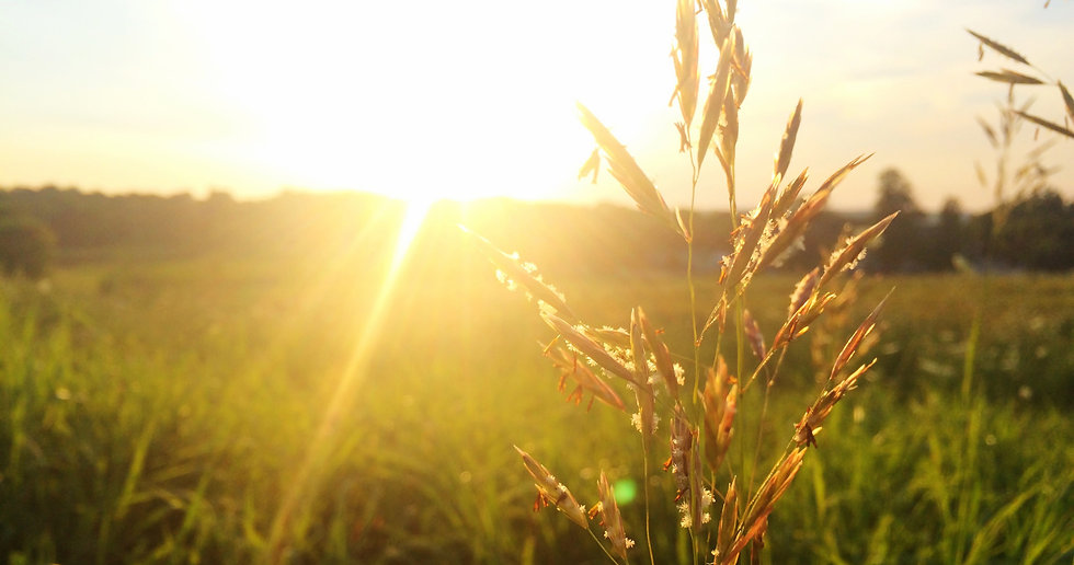 Sunrise_edited.jpg