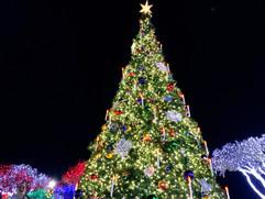 Fredericksburg Christmas