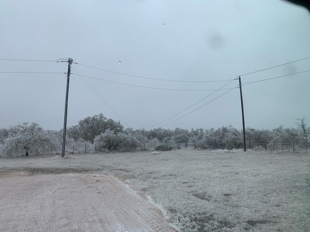 Power lines begin falling - Day 1