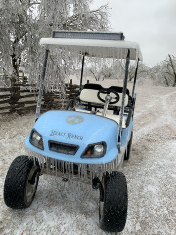 Icy Golfcart
