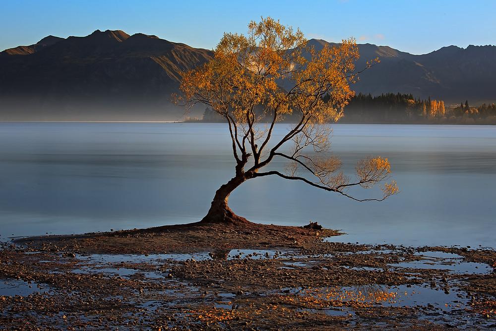 Misty autumn morning of Wanaka
