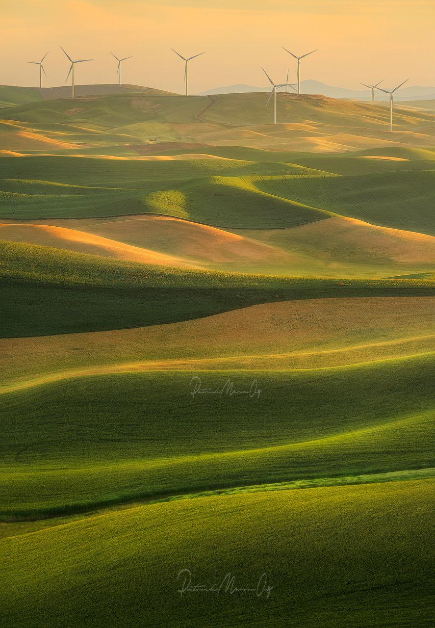 Wind Mills Galore