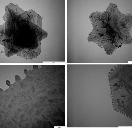In Situ Electrical Properties' Investigation and Nanofabrication of Ag/Sb2Te3 Assembled Multilayers'