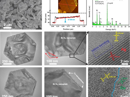 Topological doping effects in 2D chalcogenide thermoelectrics