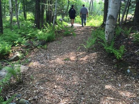 Mulch trail.jpg