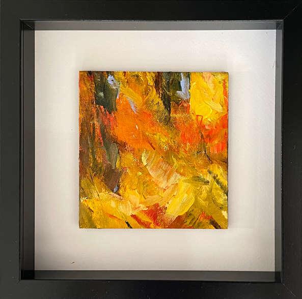 Fall Colors II