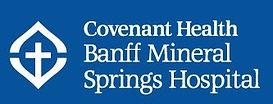 Mineral springs logo.jpg