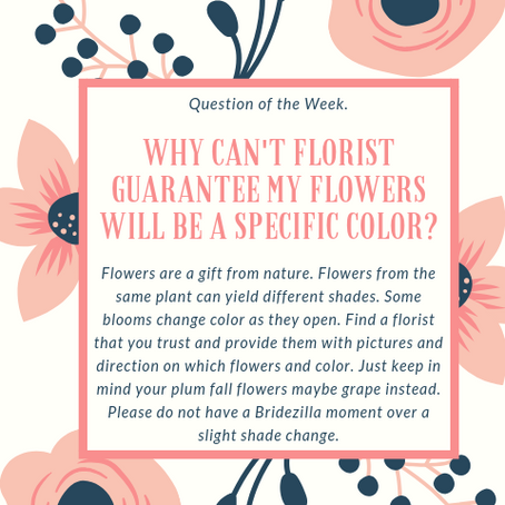 Question of the Week- Why can't florist guarantee my flowers will be a specific color?