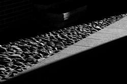 Falling shadows_7