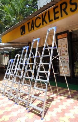 Domestic ladder From 4 Steps To 8 Steps Including Platform