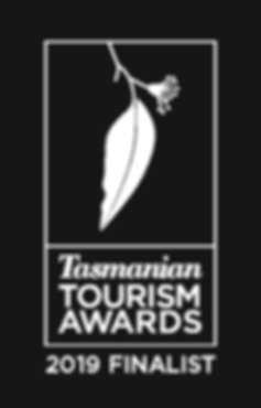 Tourism Awards Finalist 2019 Rev.png