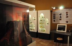 vitrines expo