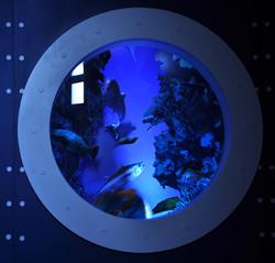 Aquarium factice