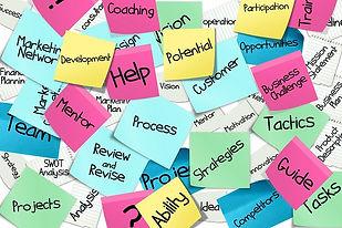 organizing, organizational, disorganization