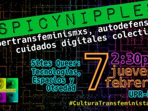 Cibertransfeminismxs, Autodefensa y Cuidados Digitales Colectivxs