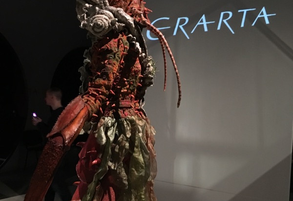ВАУ-мода! World of WearableArt