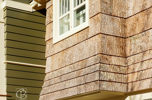 tree bark siding