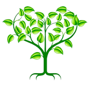Church tree transparent.png