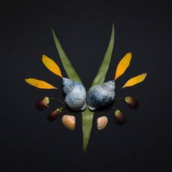 Natuurcollages_A_sanneneuteboom-02