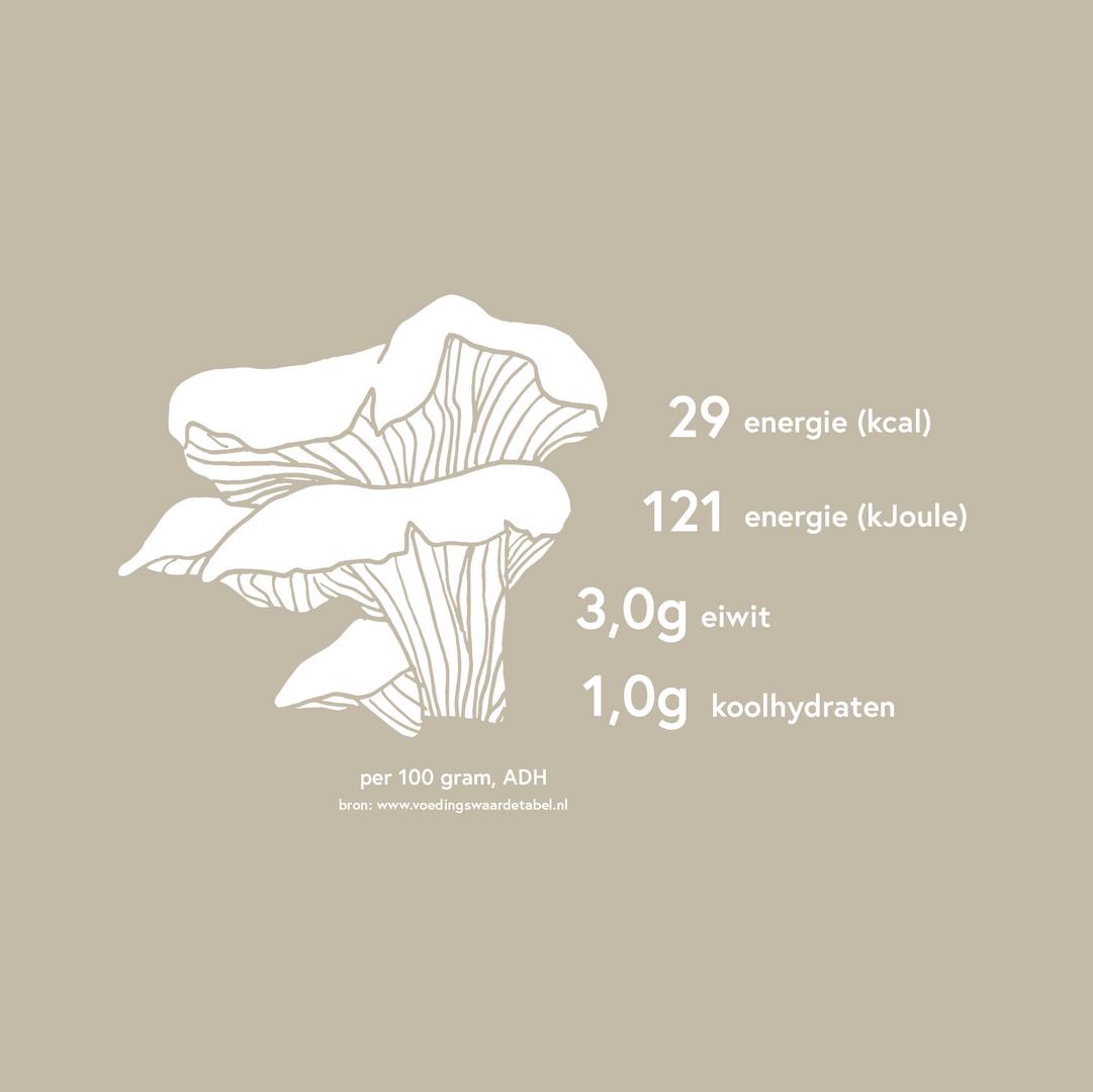 Fungifarm_illustratie_2_sanneneuteboom.p
