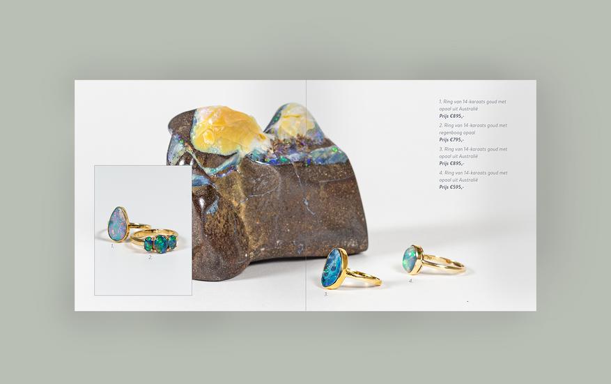 Goudenboekje-lotters-sanneneuteboom-4.png