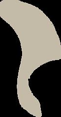 Illustraties-zwammen-sanneneuteboom.png