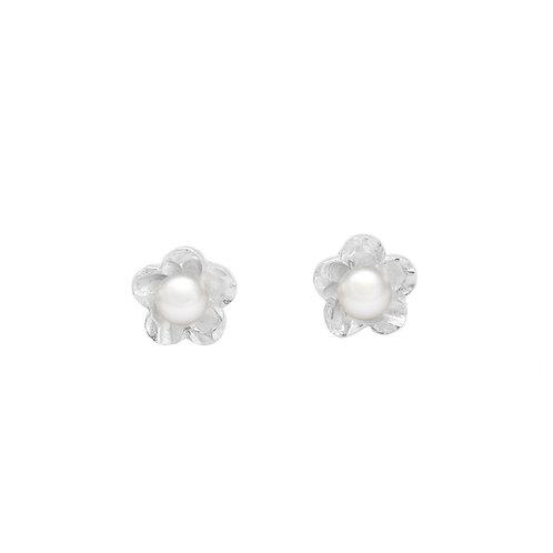 Sakura- 5-6mm 淡水珍珠純銀耳環