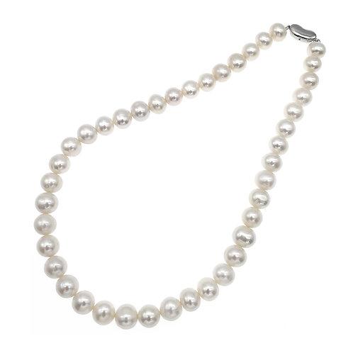 10-11mm 淡水珍珠配925純銀頸鏈 (橢圓形)