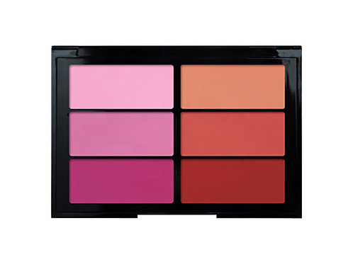 Viseart - Blush 6er Palette rose coral