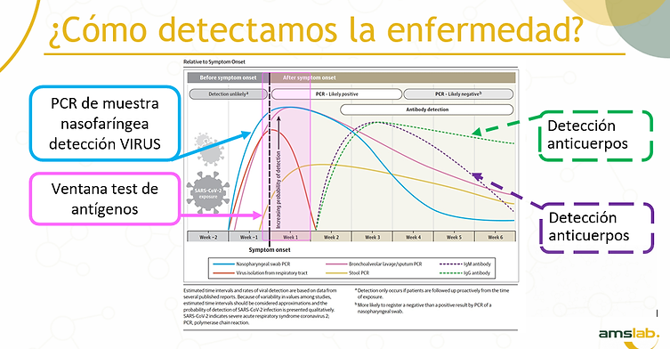 COMO DETECTAMOS LA ENFERMEDAD.png