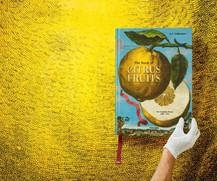 tachen_book_of_citrus_4.jpg